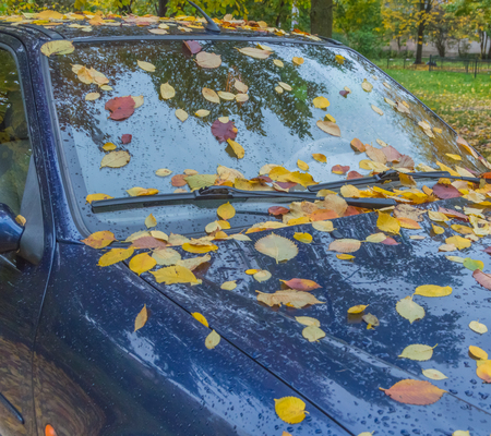 autumn day, parked car covered with leaves Stock Photo