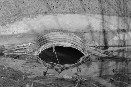 close-up, in de goot veel water, verstopt riool