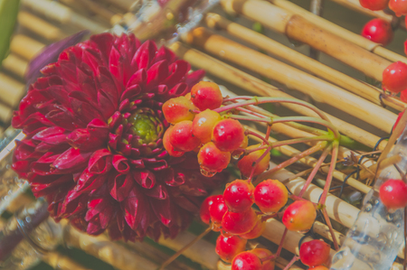 the flowers and berries of mountain ash in bamboo panels Zdjęcie Seryjne
