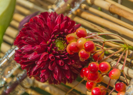 Bamboo panels with red flowers and berries of mountain ash Stock Photo