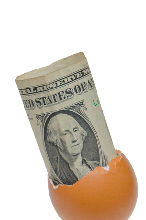 the one dollar in an egg shell on white background 스톡 콘텐츠