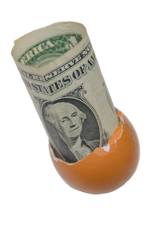 on white background, one dollar in an egg shell