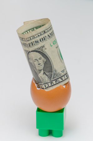 one dollar in an egg shell on white background