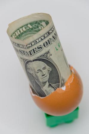 白い背景に卵の殻の中に1ドル