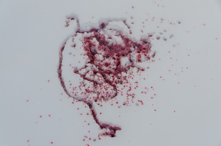 close-up, drops, blood spatter in the snow