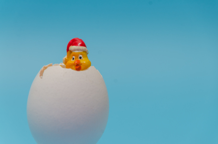 toy chick looks out of the egg shell