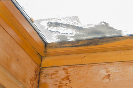 after leaking the window, black mold on the frame