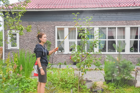 girl gardener treats bushes and trees with sprayer pesticides and fertilizer on a private plot Stok Fotoğraf