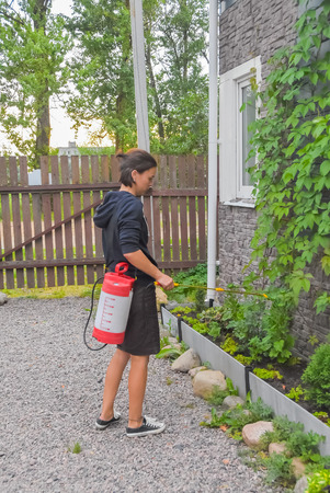 girl gardener treats bushes and trees with sprayer pesticides and fertilizer on a private plot 写真素材