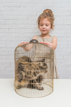 girl, a child frees the cat from the cage, in front of a white brick wall
