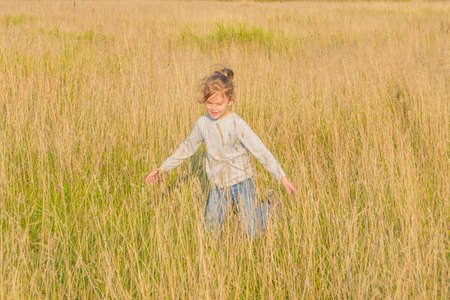 the Sunny summer day a child runs around the field with rye 写真素材