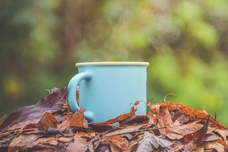 the mug with hot drink on fallen leaves in the rain Imagens - 157226148