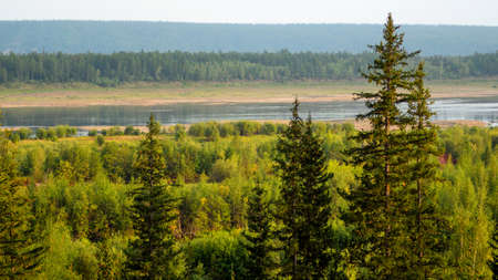 North of Vilyuy river in Yakutia in autumn, flows into spruce tundra on a wild overgrown the banks of the marshes