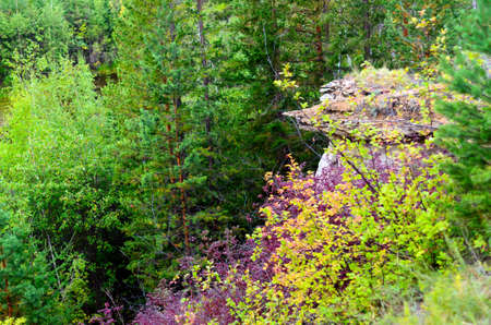 Bright autumn vegetation in the taiga on the mountainside against the background of erosion anomalies - clay mushrooms in Yakutia. Stockfoto