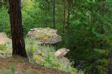 Part of the hat attractions of Yakutia isolated massif of rock - clay mushroom in the wild taiga of the North sticks out on the mountainside. Stock fotó