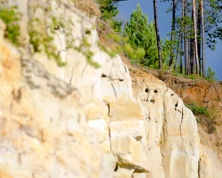 Clay cliff near the river with burrows in the form of a face and sticking out the roots of the collapsed trees of the Northern tundra in Yakutia near. Stockfoto