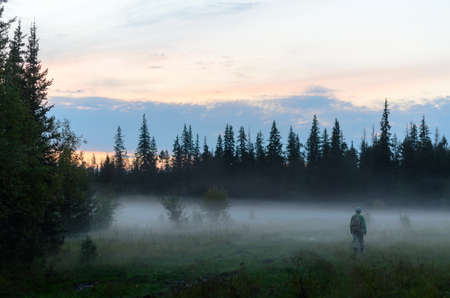 A tourist girl with a backpack goes into the white fog of swamps in the spruce forest in the evening at sunset in the wild taiga of the North of Yakutia in Russia.