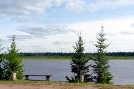 The road in the Northern Yakut village of ulus Suntar with small fir trees, a bench for rest goes along the cliff above the vilyu river with spruce tundra on the opposite Bank.