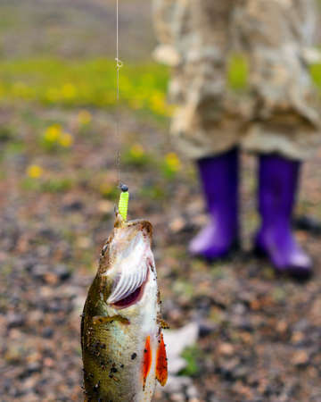 A big bass caught by a fisherman hangs on a rubber lure with a weight, a metal leash string and a cord against the background of a girls feet in boots on rocky soil.