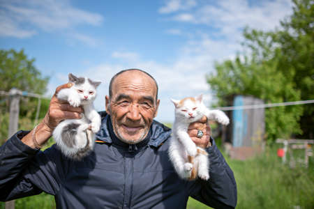 Asian old country man picks up two small white kittens smiling in his hands.