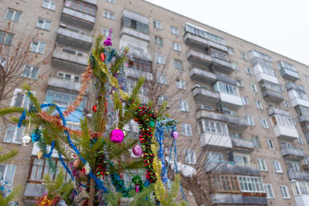 A Christmas tree stands decorated with garlands and tinsel in a Russian city in the courtyard of a residential apartment building with balconies for the new year holiday.