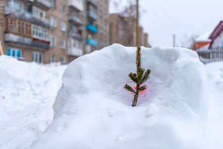 A small branch of the Christmas tree stands decorated with balloons, garlands and tinsel in a snowdrift on the street in the Russian city in the courtyard of a large apartment building on the background of the entrance and Windows.