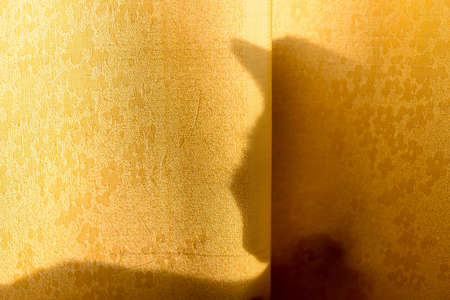 The silhouette of the shadow of the cat's bowed, pensive head with ears lying behind the curtain in the rays of the bright yellow sun in the evening.