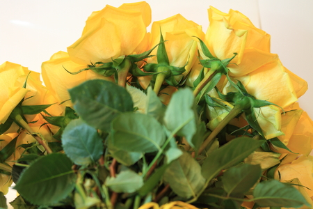 Solemn bouquet of flowers for beautiful ladies, bunch of roses.