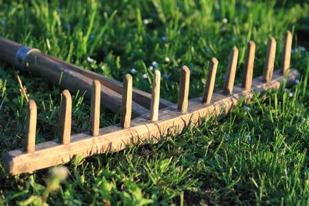 Old hand-made rake for hay in the village.