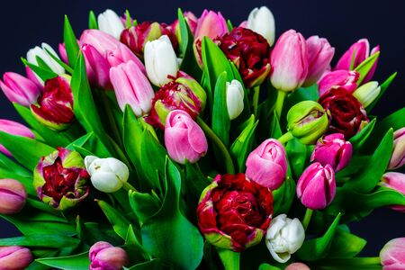 bright bouquet of tulips on a dark background