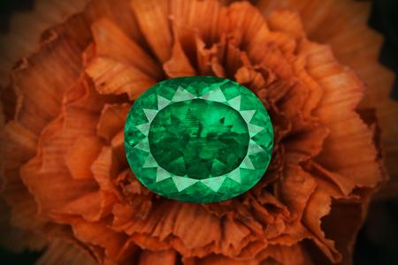Big oval cut emerald on flower. Stock Photo