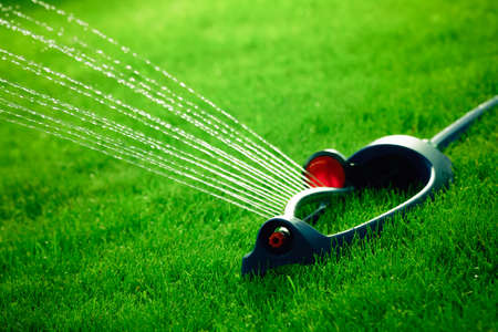Lawn sprinkler spaying water over green grass. Stock Photo