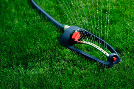 spaying: Lawn sprinkler spaying water over green grass. Stock Photo