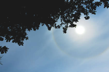 Atmospheric optical effect circle around the sun on hot summer day