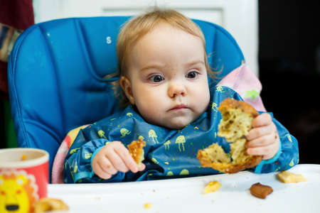 A small child sits in a feeding chair and eats bread for the first time. Face in crumbs