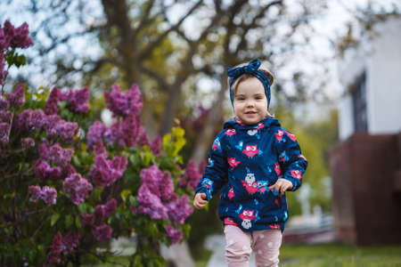 A little girl stands near a lush bush of lilacs, she smiles and sniffs purple flowers
