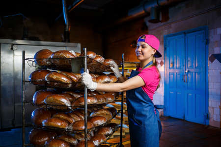 A baker girl takes hot bread in a bakery against the background of shelving with bread. Industrial production of bread. The stage of baking in a bakery Archivio Fotografico
