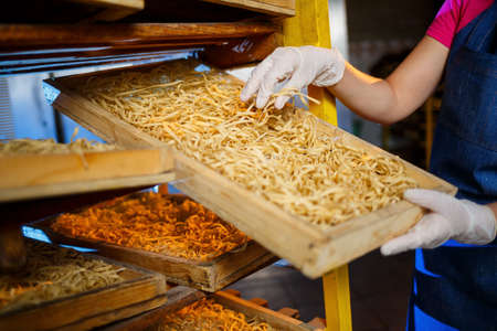 The girl works on the production of spaghetti. Making noodles. Pasta factory. Stage production of pasta. Raw noodles. Worker with a box of pasta.