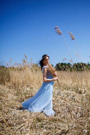 Portrait of a tender girl in a blue long dress in dry peas with a smile on her face on a sunny warm summer day