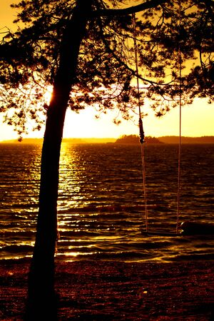 swing hanging on the tree with ropes at backgroung of sea in sunset lighting photo