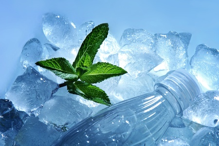 close up of plastic bottle of water and green mint leaves lying in ice cubes photo