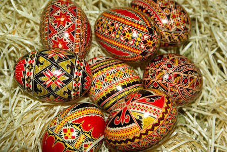 traditional painted easter eggs in dry moss net photo