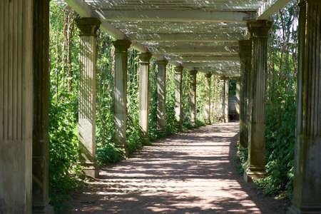 st petersburg: St. Petersburg Catherine Park Colonnade