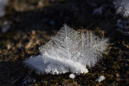 Ice crystals closeup. macro.