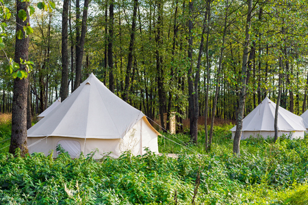 Group of glamping bell tents at forest Фото со стока