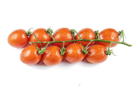 tomatoes on branch with drops of water isolated on white background