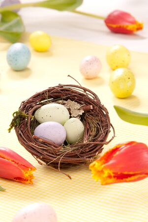 Colorful painted Easter eggs blue, pink, yellow Painted Colorful in birds nest decorated with spring tulips flowers on a pastel background photo
