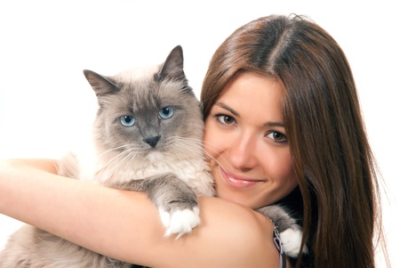 Young pretty woman hold her lovely Ragdoll cat with blue eye isolated on a white background Stok Fotoğraf