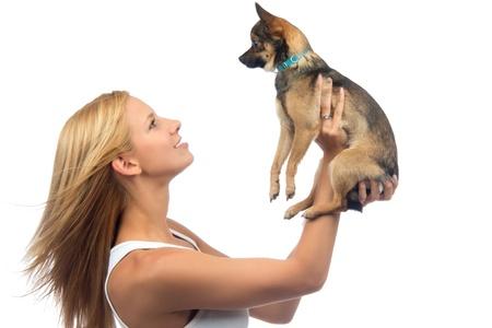 mujer con perro: Mujer bonita joven sostener en las manos pequeñas de perro o cachorro Chihuahua sobre un fondo blanco