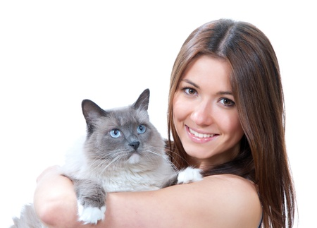 Young pretty woman hold her lovely Ragdoll cat with blue eyes isolated on a white background photo